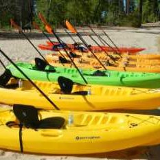 kayak rentals naples fl